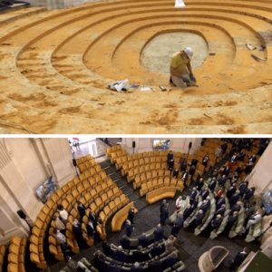 réflexion de l'amphithéâtre de l'institut de France
